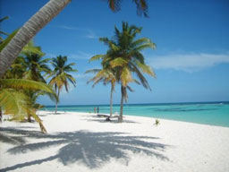 Мы предлагаем туры в доминикану на
